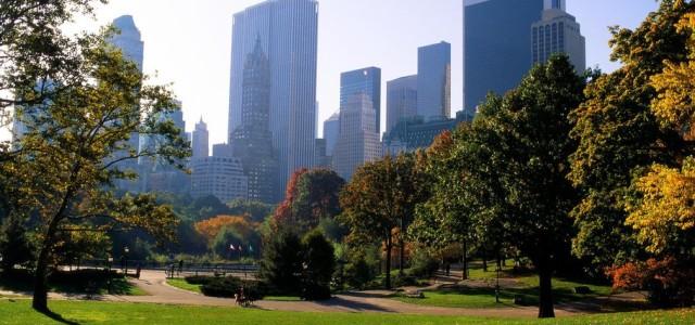 نيويورك في 8 مقاطع